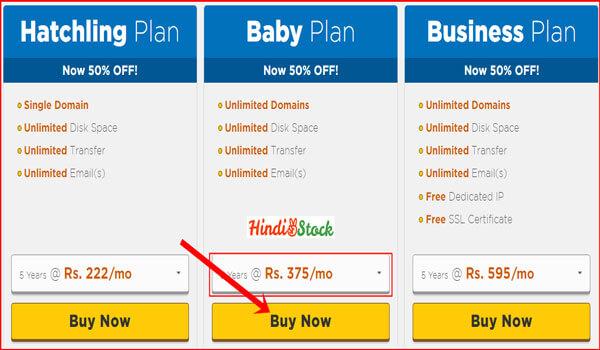hostgator hosting choose offer